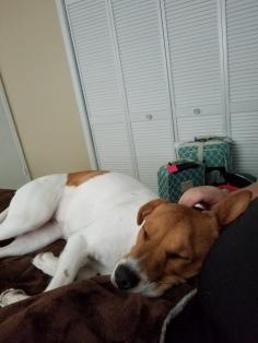 """""""Comfy"""""""